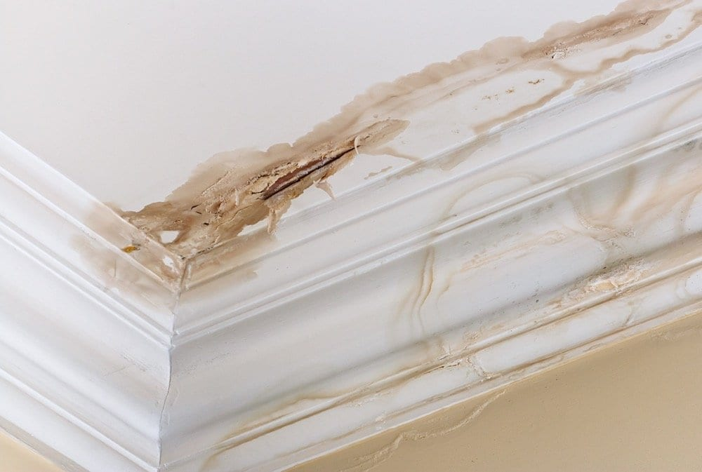 Calgary Roofing Companies | Claw Roofing Specialists Calgary Roofing Company - Claw Roofing - Damaged leaky roof