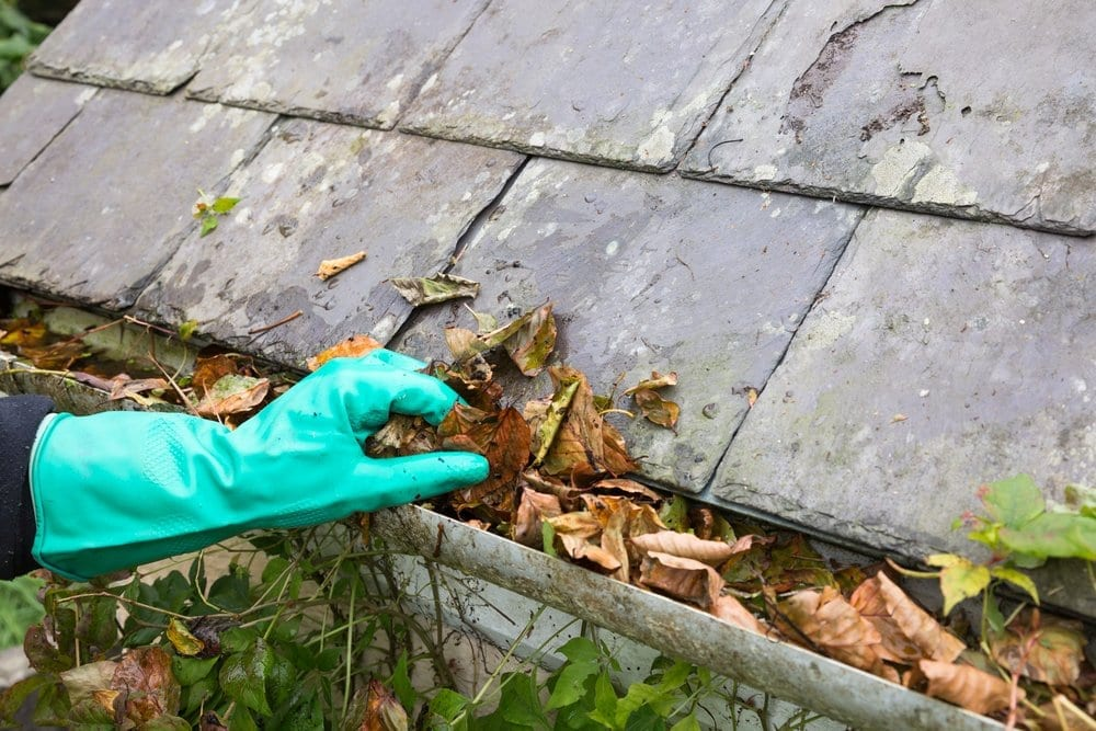 Calgary Roofing Companies | Claw Roofing Specialists Cleaning Gutters As Part of Roof Maintenance | Claw Roofing Calgary - Full Service Roofing Company