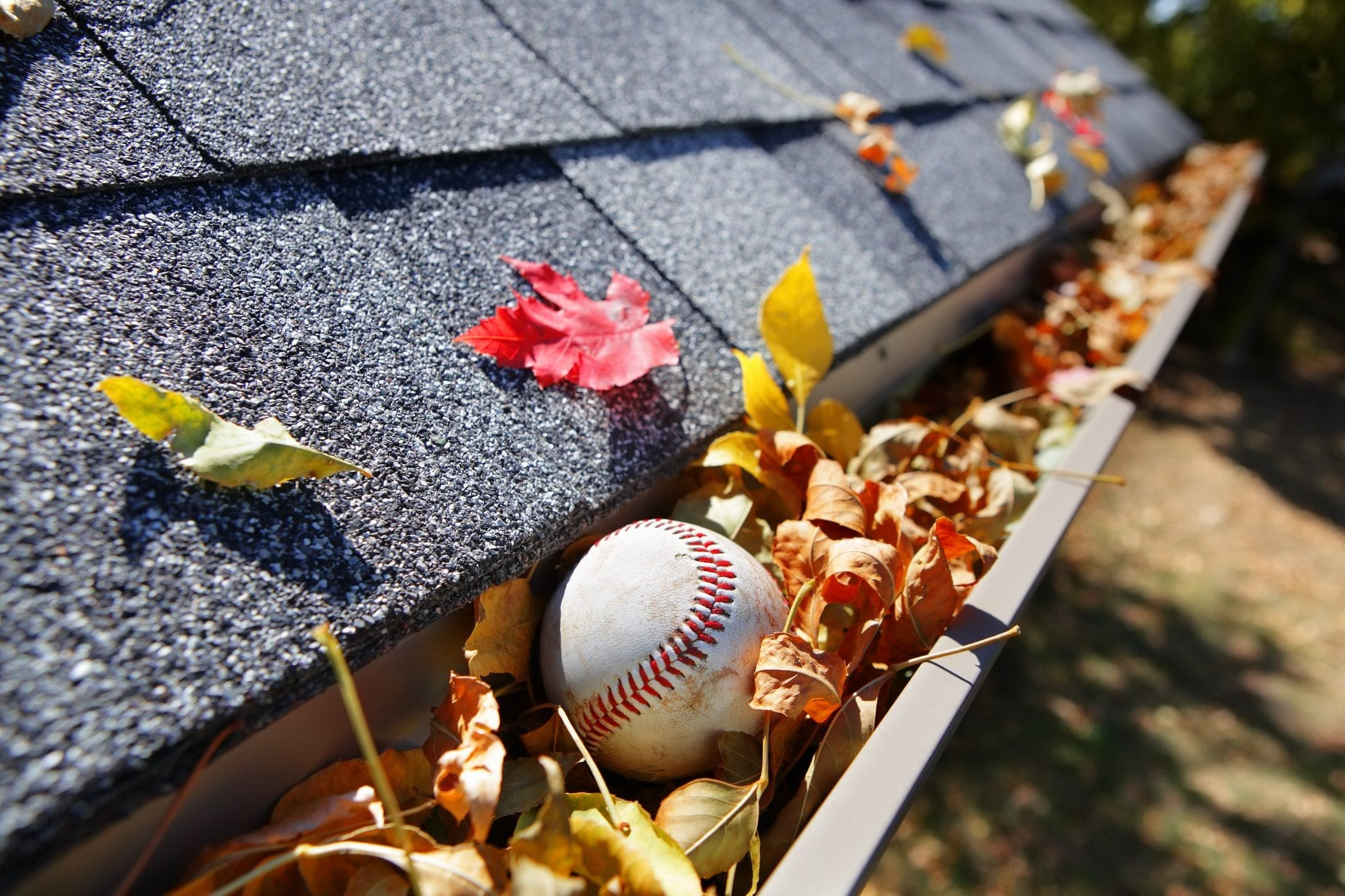 Calgary Roofing Companies | Claw Roofing | Cleaning Gutters