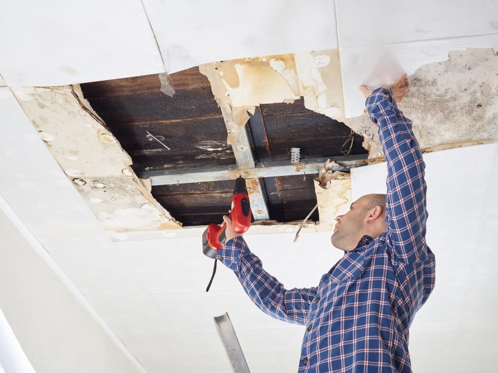 collapsed-roof-mold-Calgary-roof-replacement-repairs | Claw Roofing