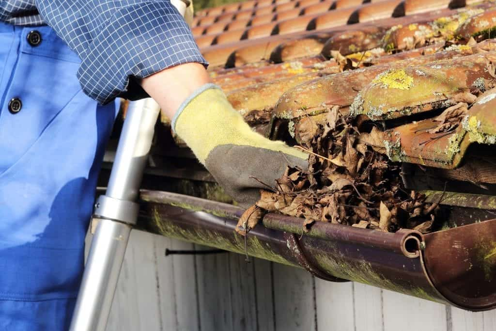 residential-roof-cleaning-calgary-claw-roofing.